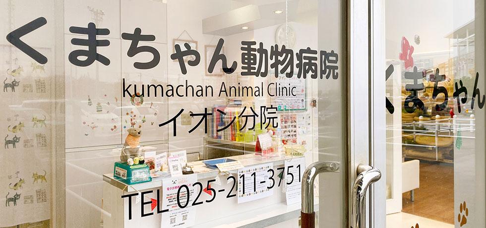 イオン分院 | くまちゃん動物病院